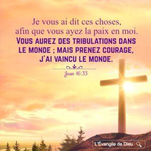 Courage, j'ai vaincu le monde - Diocèse de Cayenne